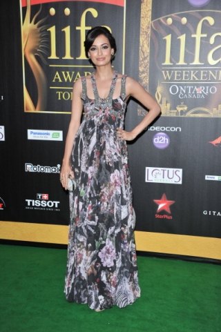 11jul whwniifaawards13 Whos Hot Whos Not   IIFA Awards – Green carpet and Awards ceremony