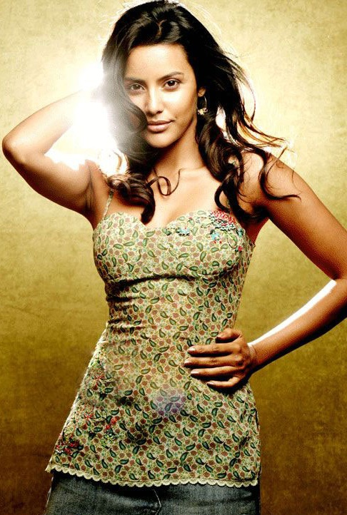 11nov priya anand Priya Anand to Debut with English Vinglish