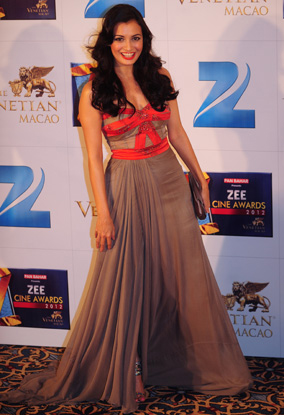 01jan whwn dia Whos Hot Whos Not: Zee Cine Awards 2012