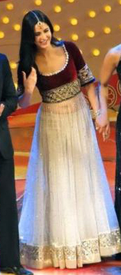 01jan whwn katrina Whos Hot Whos Not: Zee Cine Awards 2012