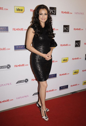 12jan whwn filmfarenoms07 Who's Hot, Who's Not   Filmfare Nominations Bash 2011