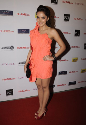 12jan whwn filmfarenoms14 Who's Hot, Who's Not   Filmfare Nominations Bash 2011