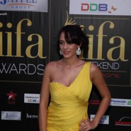 12jun IIFAgreencarpet16 185x185 Raj&Pablos Bollytastic World: IIFAs Award Show Green Carpet in Photos!