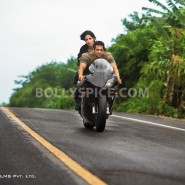 12jul ETT stills26 185x185 Check out the exclusive stills, wallpapers and more from Ek Tha Tiger!