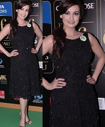 Dia Whos Hot Whos Not: IIFA Rocks 2013