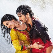 13aug ShuddhDesiRomance Stills11 185x185 Shuddh Desi Romance   Music Out Now!
