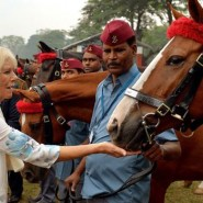 13nov PrinceCharlesCamillaIndia15 185x185 Prince Charles and the Duchess of Cornwall's Trip to India has more than one message
