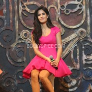 13nov dhoom3launch 20 185x185 Aamir and Katrina launch Dhoom 3 title song