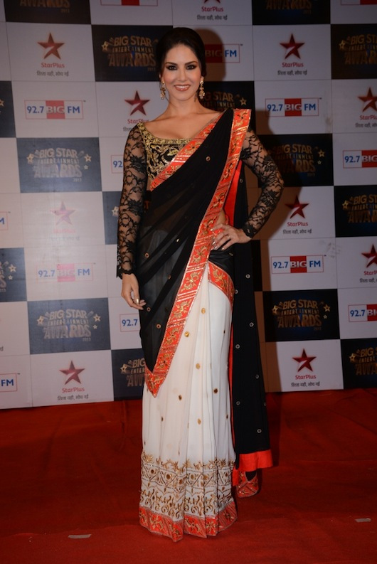 Who's Hot Who's Not: Big Star Entertainment Awards 2013 | BollySpice