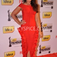 14jan 59thffawards 35 185x185 59th Filmfare Awards Winners List & Red Carpet pictures