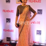 14jan 59thffawards 46 185x185 59th Filmfare Awards Winners List & Red Carpet pictures
