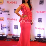 14jan 59thffawards 47 185x185 59th Filmfare Awards Winners List & Red Carpet pictures