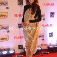 14jan 59thffawards 55 185x185 59th Filmfare Awards Winners List & Red Carpet pictures