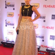 14jan 59thffawards 68 185x185 59th Filmfare Awards Winners List & Red Carpet pictures
