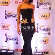 14jan 59thffawards 71 185x185 59th Filmfare Awards Winners List & Red Carpet pictures