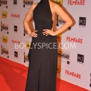 14jan 59thffawards 77 185x185 59th Filmfare Awards Winners List & Red Carpet pictures