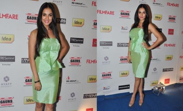 14jan whwn filmfarepreawards18 612x371 Whos Hot Whos Not: Filmfare Pre Awards Party