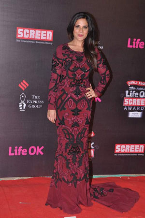 Richa Whos Hot Whos Not   Screen Awards 2014