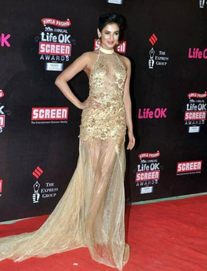 Sonal Whos Hot Whos Not   Screen Awards 2014