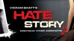hatestory2 300x168 REFLECTIONS 2013: Sequels to look forward to in 2014