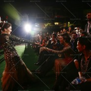 14apr IIFAAwards13 185x185 In Pictures: 15th Tata Motors IIFA Awards