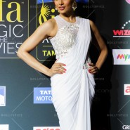 14apr iifamomgc 16 185x185 In Pictures: IIFA Magic of the Movies Green Carpet