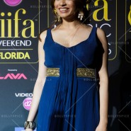 14apr iifamomgc 20 185x185 In Pictures: IIFA Magic of the Movies Green Carpet