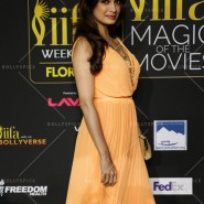 14apr iifamomgc 34 185x185 In Pictures: IIFA Magic of the Movies Green Carpet