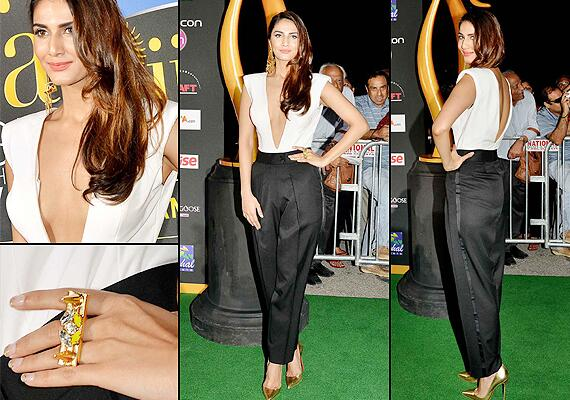 14apr whwnIIFAAward04 Whos Hot Whos Not: IIFA Green Carpet Events