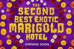 14aug_TSBMarigoldHotel-Banner01