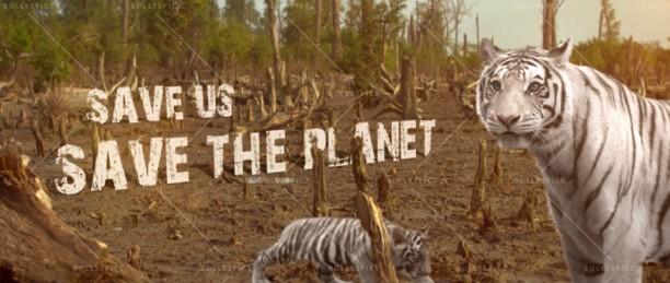 14oct_SundarbanTigers-ZaraJeeneDe01