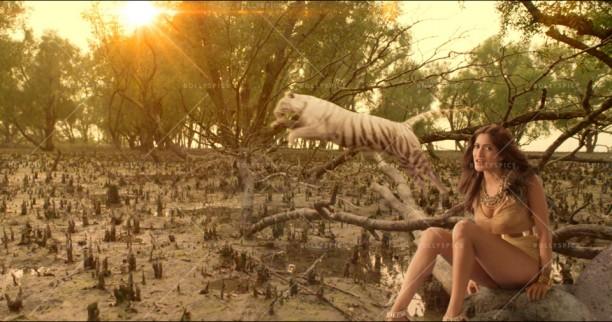 14oct_SundarbanTigers-ZaraJeeneDe02