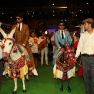 Shahid Kapoor and Farhan Kapoor make an entrance at NEXA IIFA Awards 2016 (1)